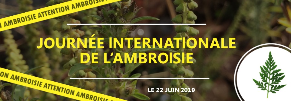 Journée internationale des ambroisies 2019